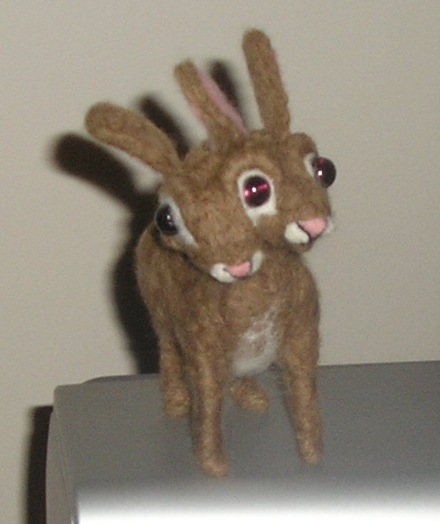 two headed rabbit