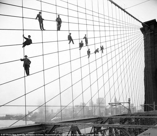 Brooklyn Fly-guys